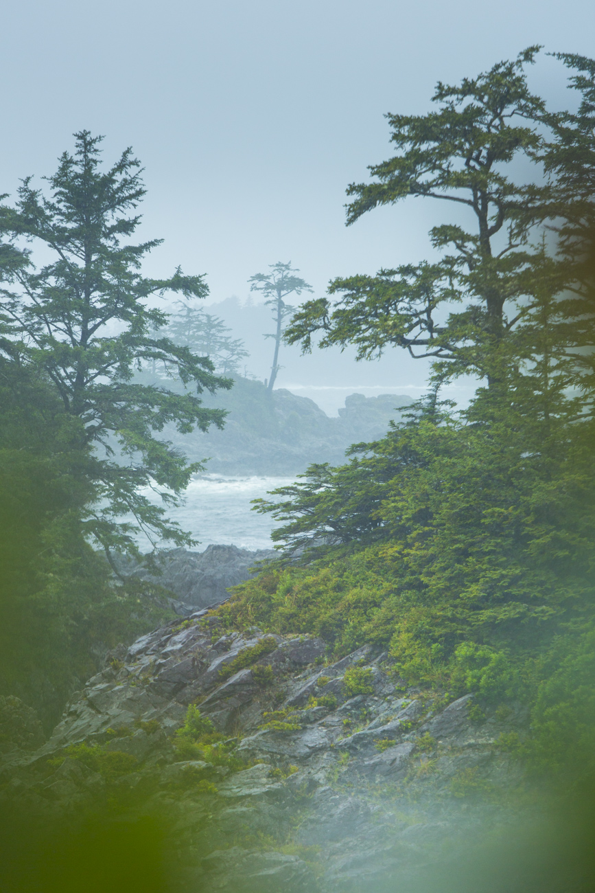 Ucluelet_Lighthouse_Trail_190912-103
