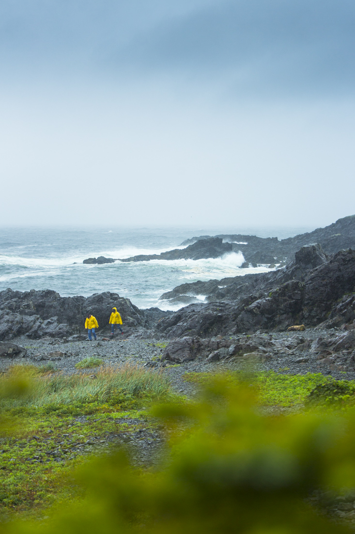Ucluelet_Lighthouse_Trail_190912-85